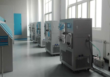 Pet food freeze dryer application, freeze-dried meat snack benefits