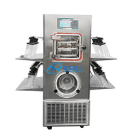 Non-standard customized  freeze dryer