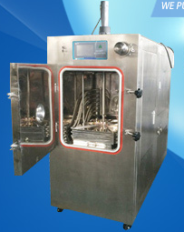 Floor Model Manifold Freeze Dryers